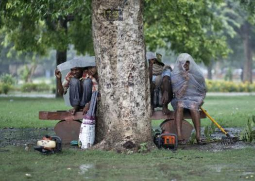 Men use plastic sheets to protect themselves from the rain while sitting under a tree in New Delhi